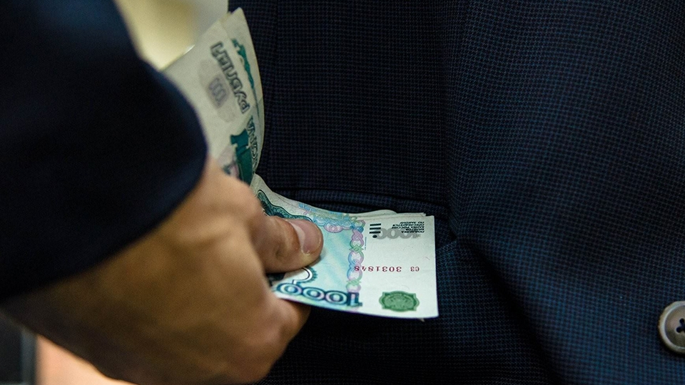 Котовчанин, пытавшийся дать взятку полицейскому, приговорен к лишению свободы