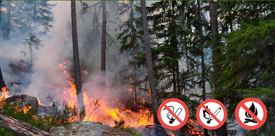 С 1 мая на территории Котовска установлен особый противопожарный режим