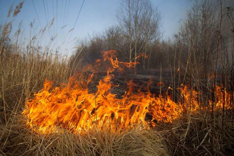 За 9 месяцев в Котовске произошло 78 пожаров