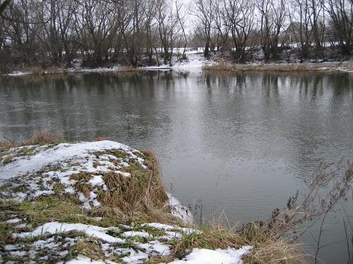 Уровень воды в Цне около Котовска резко вырос